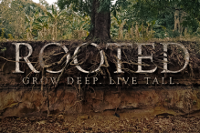 Rooted-600x400